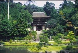 提供:奈良市観光企画課