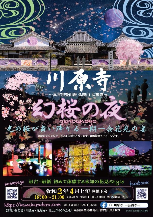 川原寺 幻桜の夜