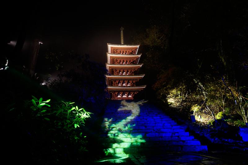 国宝五重塔と紅葉ライトアップ