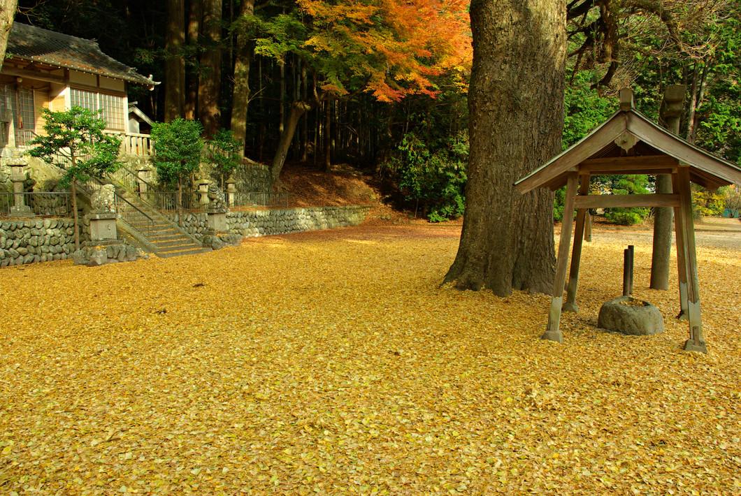 春日神社(土屋原)
