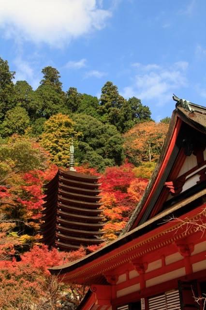 談山神社境内 写真提供:澤 戢三