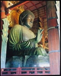 初詣(大仏殿)