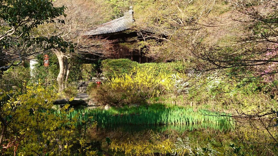 春季特別展(在原業平画像、伊勢物語・こけら経、多宝塔心柱など)
