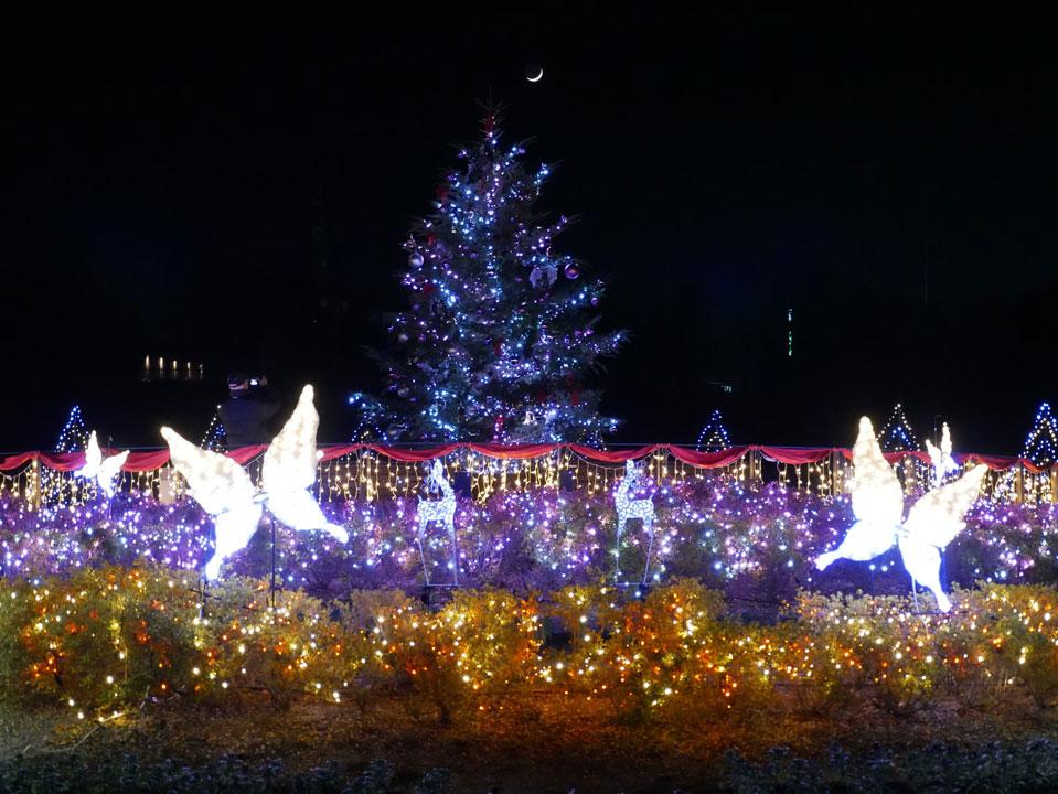 第4回 馬見クリスマスウィーク
