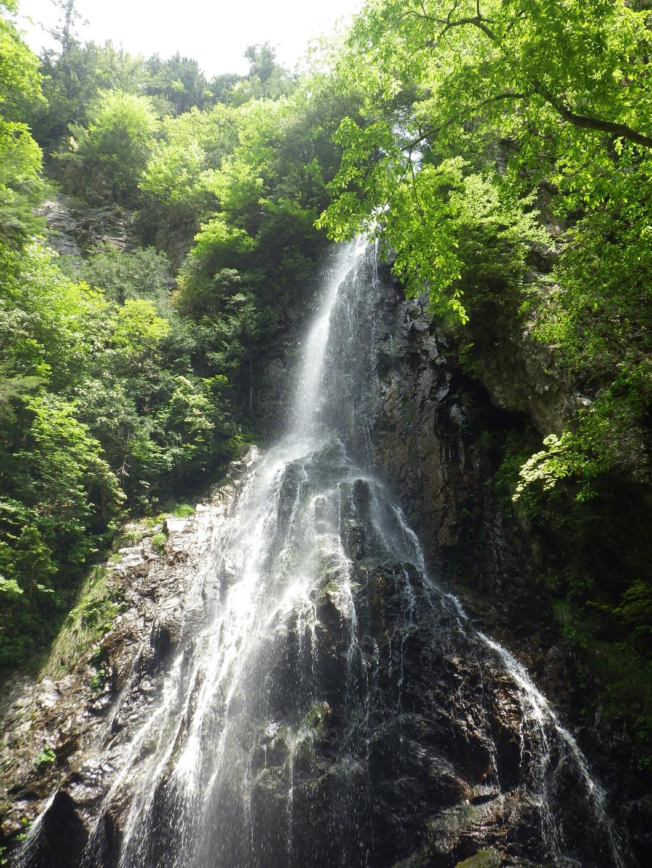 夏の御船の滝