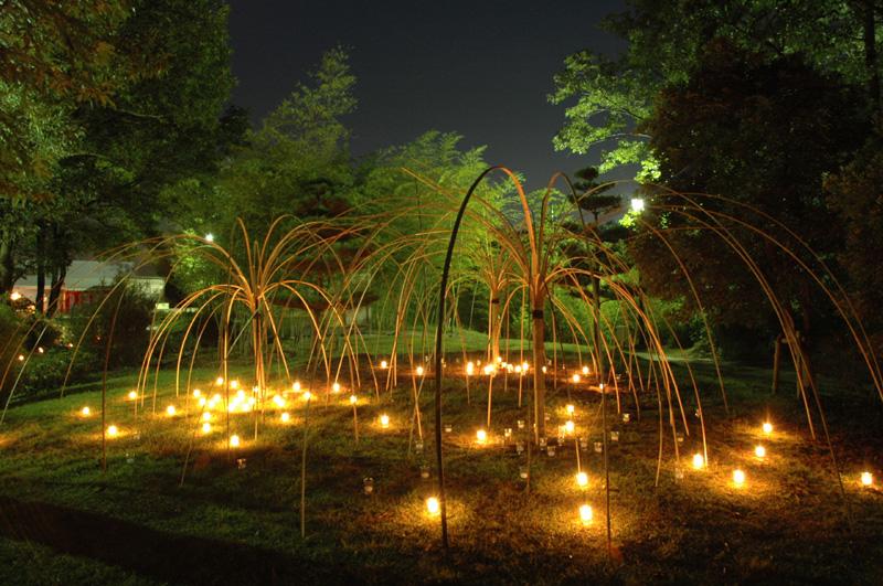 竹で作る幽玄の世界 高山竹あかり