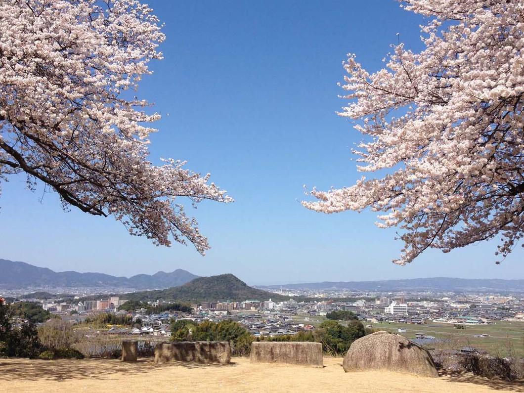 甘樫丘|奈良県観光[公式サイト]...