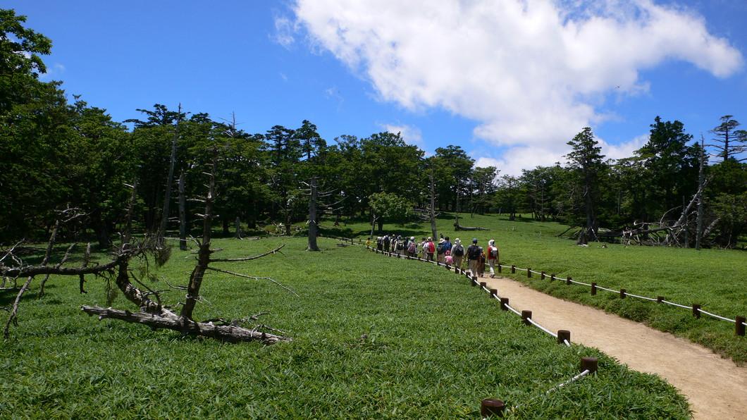 神秘の森 荘厳の山 大台ヶ原を歩く 2021