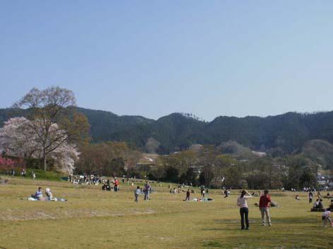 国営飛鳥歴史公園 石舞台地区