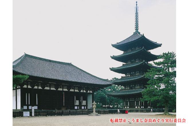 興福寺 東金堂・後堂 早朝特別拝観