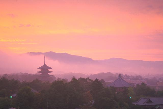 興福寺 僧侶の法話と瑜伽行体験