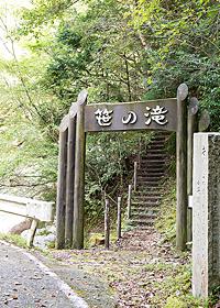 森の生命を感じつつ、入口から10分ほど奥へとすすむ。