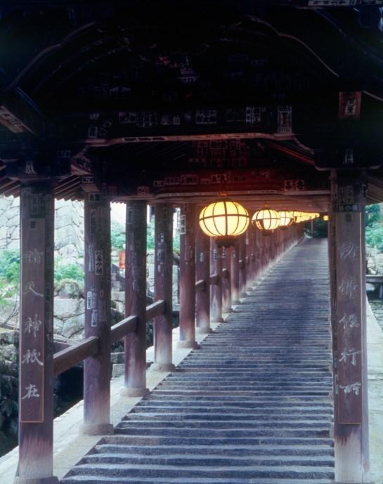 ④長谷寺「本尊大観音尊像」特別拝観