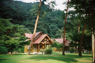 温泉に歩いて行ける「キャンプ場」と眺めが最高!「平成の森」