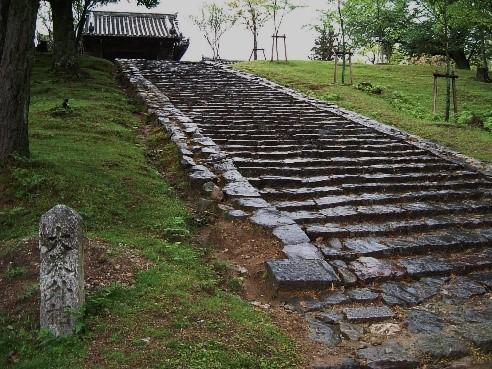 ガイドと歩くひと味違った奈良「身近で感じる大仏さまのパワースポット」
