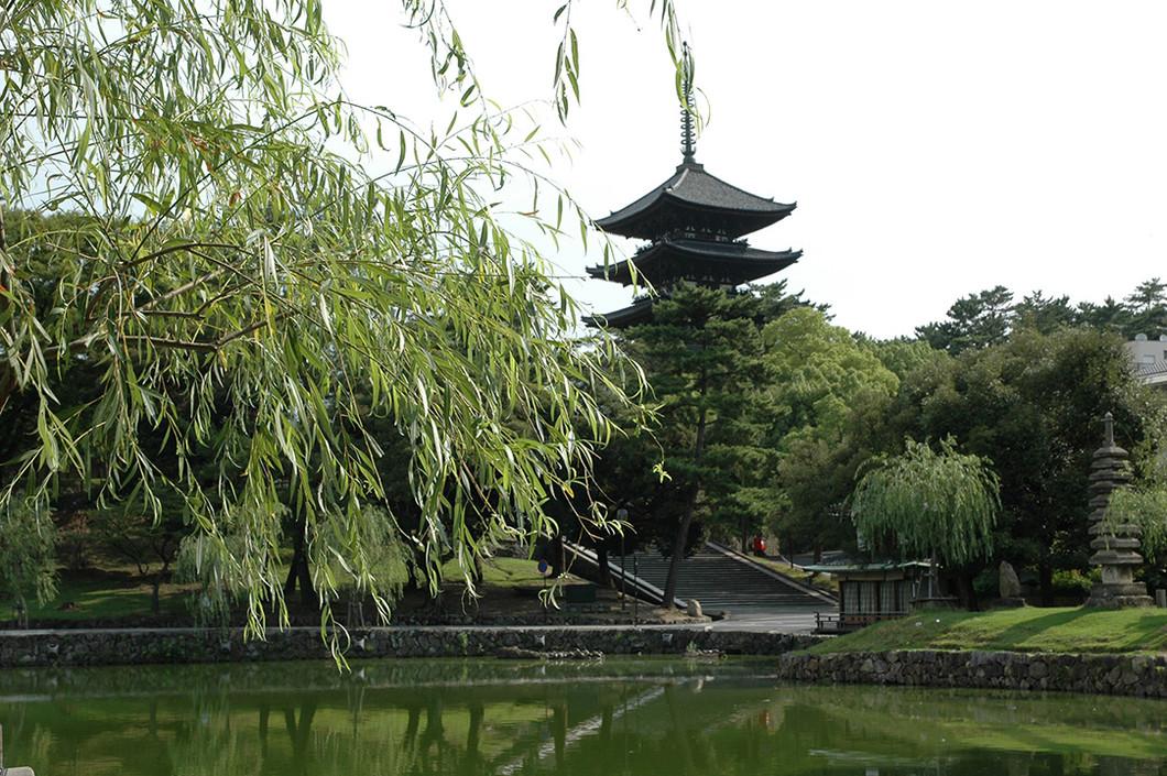 観光ボランティアガイドと歩く・なら「奈良朝ゆかりの史跡をめぐる」PARTⅡ