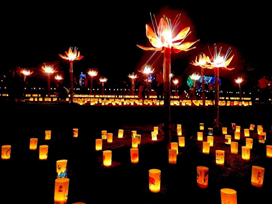 夜は「飛鳥光の回廊」をお楽しみください(同日開催)