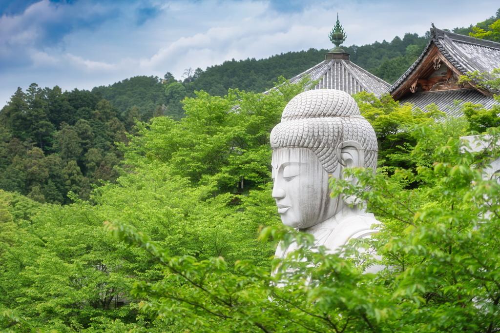 新緑大仏 Buddha in Green