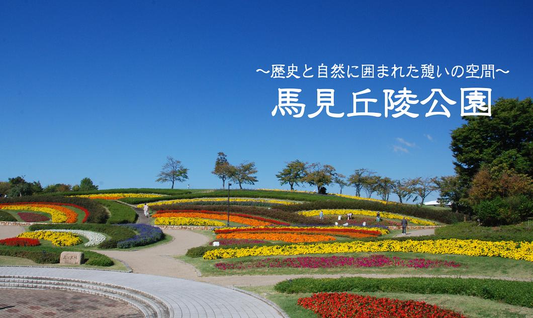 奈良県営  馬見丘陵公園