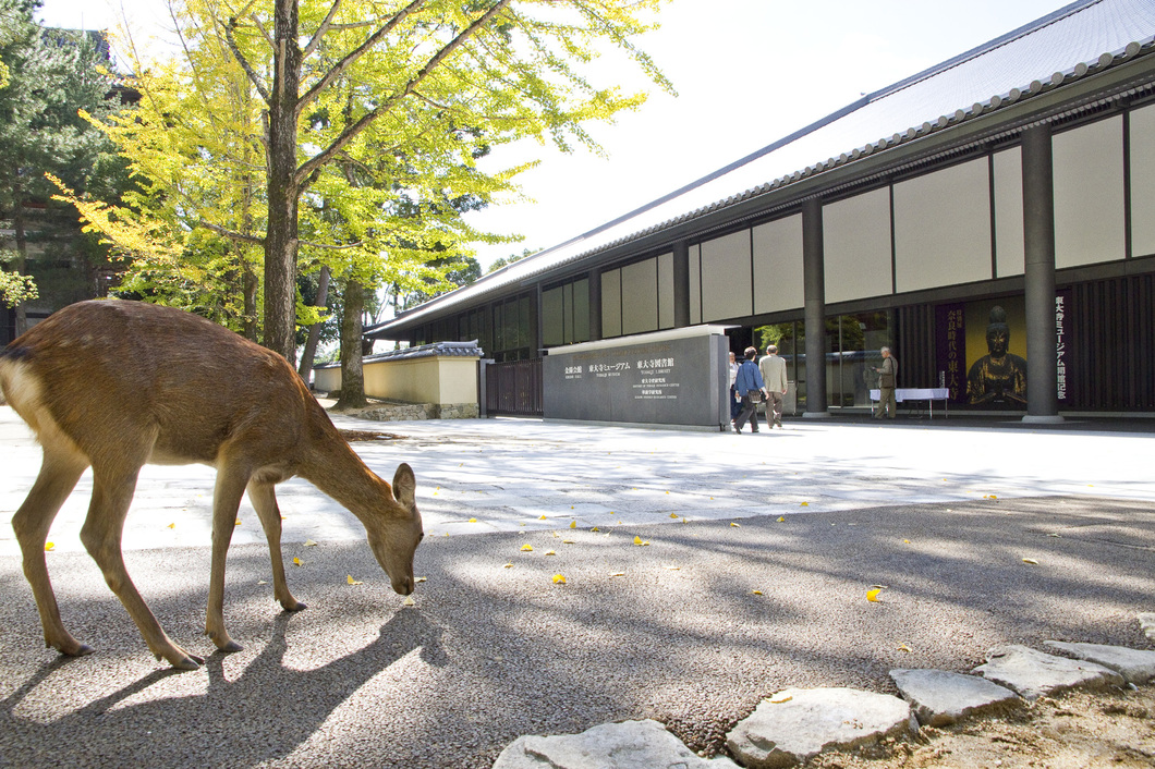 東大寺総合文化センター(東大寺ミュージアム)