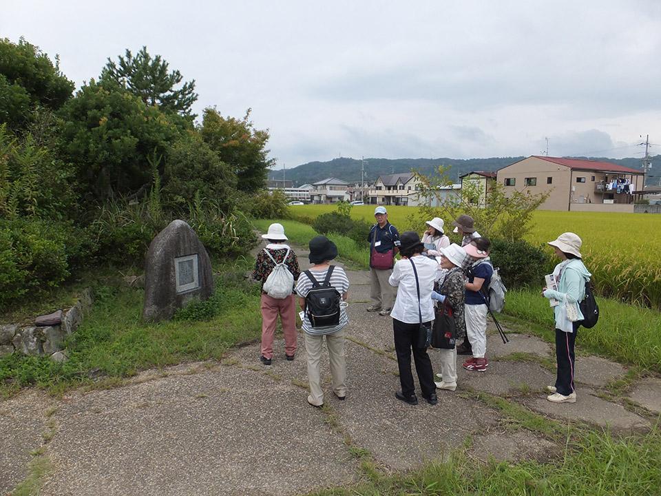 観光ボランティアガイドと歩く・なら「あなたに魅せたい秋の三塔巡り」