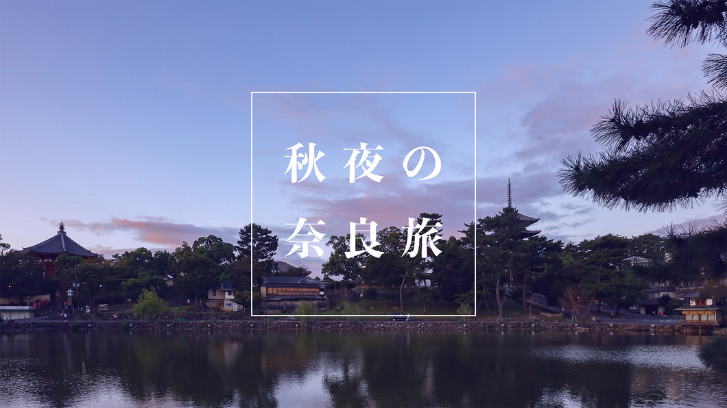 夜間特別参拝に美しい夜景!秋夜の奈良旅