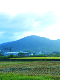 万葉人も愛した三輪山 (写真/EditZ)